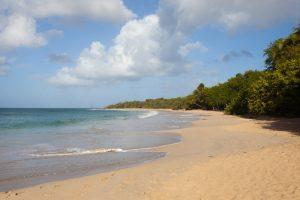 Plage des Salines, Martinique - 29 janvier