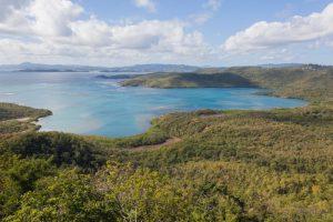 Presqu'île de la Caravelle, Martinique - 2 février