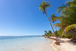 Plage de Bois Jolan, Sainte-Anne, Guadeloupe - 29 janvier